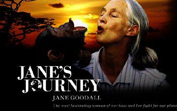 Jane's Journey : Le long voyage de Jane Goodall